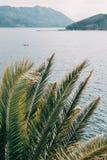 The coastline of Budva. St. Nicholas Island Budva, Montenegro Spring, top view royalty free stock photos