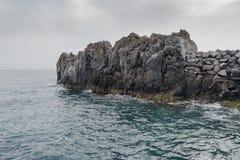 Coastline in Camara de Lobos royalty free stock images