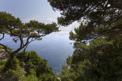 Coastline of Capri island, Capri, Italy Stock Photos