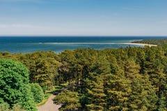 Coastline and coniferous forest of Hiiumaa island. Top view on coastline and coniferous forest of Hiiumaa island, Estonia royalty free stock image