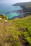 Coastline in Cornwall Royalty Free Stock Image