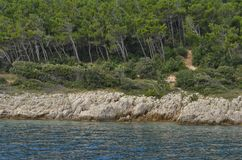 Coastline in Croatia with rocks and big trees and bushland royalty free stock image