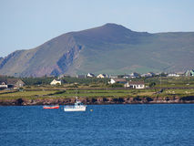 Coastline in Dingle, Ireland Stock Photography