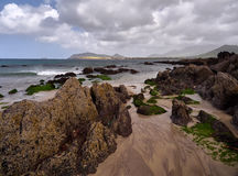 Coastline in Dingle, Ireland. Green algae grow on the rocks at Wine Strand, Dingle, Ireland. The blue sea is cristal clear Royalty Free Stock Photography