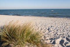 Coastline with dunes Stock Image