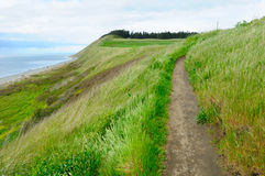 Coastline in ebey's landing Stock Photos
