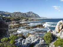 Coastline at Fernkloof nature reserve Stock Images