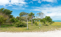 Coastline of Fort Zachary State Park in Key West, FL.  stock images