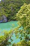 coastline of a green      china sea thailand kho phangan  bay Stock Photo