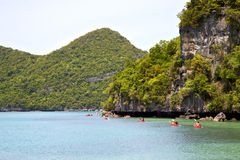 coastline of a green lagoon and tree  south china kayak Stock Photo