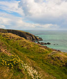 Coastline in Ireland Royalty Free Stock Photo
