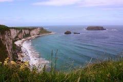 Coastline landscape Stock Images
