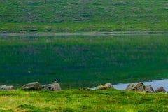 Coastline and landscape along the Isafjordur fjord. View of coastline and landscape along the Isafjordur fjord, in the west fjords region, Iceland Royalty Free Stock Photography