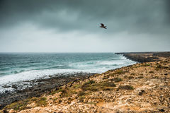 Coastline in Lanzarote in gloomy weather Stock Image