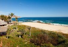 Coastline of Los Cabos, Mexico Stock Image