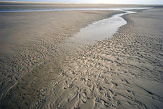 Coastline Low Tide Stock Images