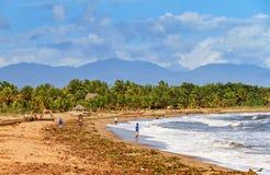 Coastline Maroantsetra Royalty Free Stock Image