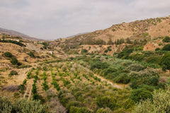 Coastline and meadows Cyprus Royalty Free Stock Photography