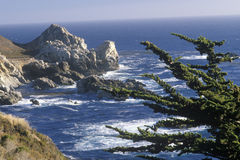 Coastline Near Big Sur, California Royalty Free Stock Images