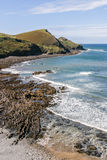 Coastline near Crackington Haven in North Cornwall, UK.  Cam Bea Royalty Free Stock Photography