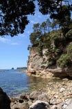 Coastline near Hahei Royalty Free Stock Photos