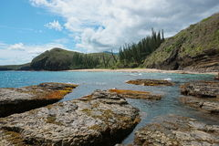 Coastline New Caledonia landscape beach rock pines stock photos
