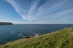 Coastline of New Zealand stock photography