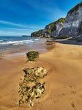 Coastline in Northern Ireland. Coastline near Portrush in Northern Ireland royalty free stock images