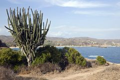 Coastline of Oaxaca, Mexico Stock Image