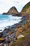 Coastline of the Ocean on the California Beach Royalty Free Stock Photo