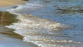 Coastline ocean waves from Maine stock video