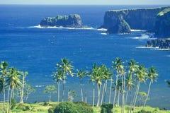 Coastline with Palm Trees, Maui, Hawaii Stock Image