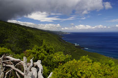 The coastline of Pico island, Azores Stock Image