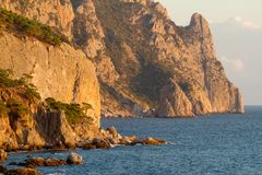 Coastline with pine trees Royalty Free Stock Photo