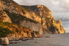 Coastline with pine trees Royalty Free Stock Image