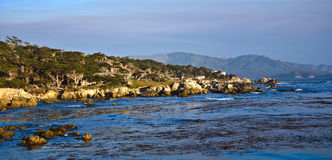 Coastline at Point Lobos in Sunset Royalty Free Stock Photo