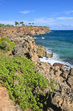 Coastline, Poipu Beach, Kauai Royalty Free Stock Image