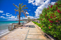 Coastline promenade with palm trees in Cogoleto town, Italian Riviera. Coastline promenade with palm trees, Cogoleto city and azure water, Italien Riviera Royalty Free Stock Photo