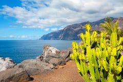 Coastline in Puerto de Santiago. Tenerife, Spain Royalty Free Stock Images