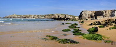Coastline of the Quiberon in France Royalty Free Stock Photo