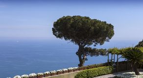 Coastline in Ravello, Amalfi coast, italy Royalty Free Stock Photo