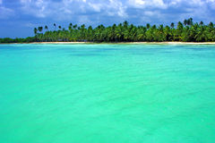 Coastline  in  republica dominicana Stock Image