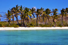 Coastline  rock in the  blue lagoon relax    isla contoy  mexico Royalty Free Stock Image