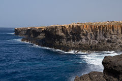 Coastline on Sal. Steep coast on Sal on Cabo Verde Stock Image