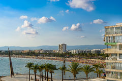 Coastline Salou, Tarragona. With blue sky, Palm Trees Royalty Free Stock Photos