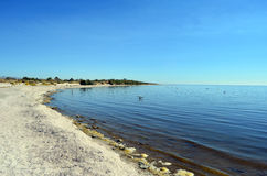 Coastline at the Salton Sea. California Stock Image