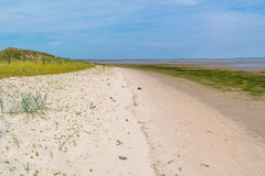 Coastline with sand, grass and mudflat at low tide near Rotterda Stock Photo