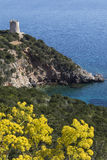 Coastline of Sardinia - Italy Stock Photos