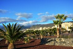 Coastline scene with palm trees from southern Tenerife.Canary Island. Spain. Royalty Free Stock Images