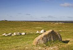 Coastline with stone and grass Stock Photo